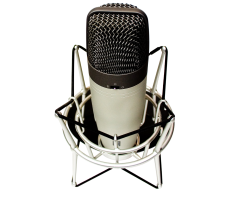 Voice Overs for All Types of Narrations